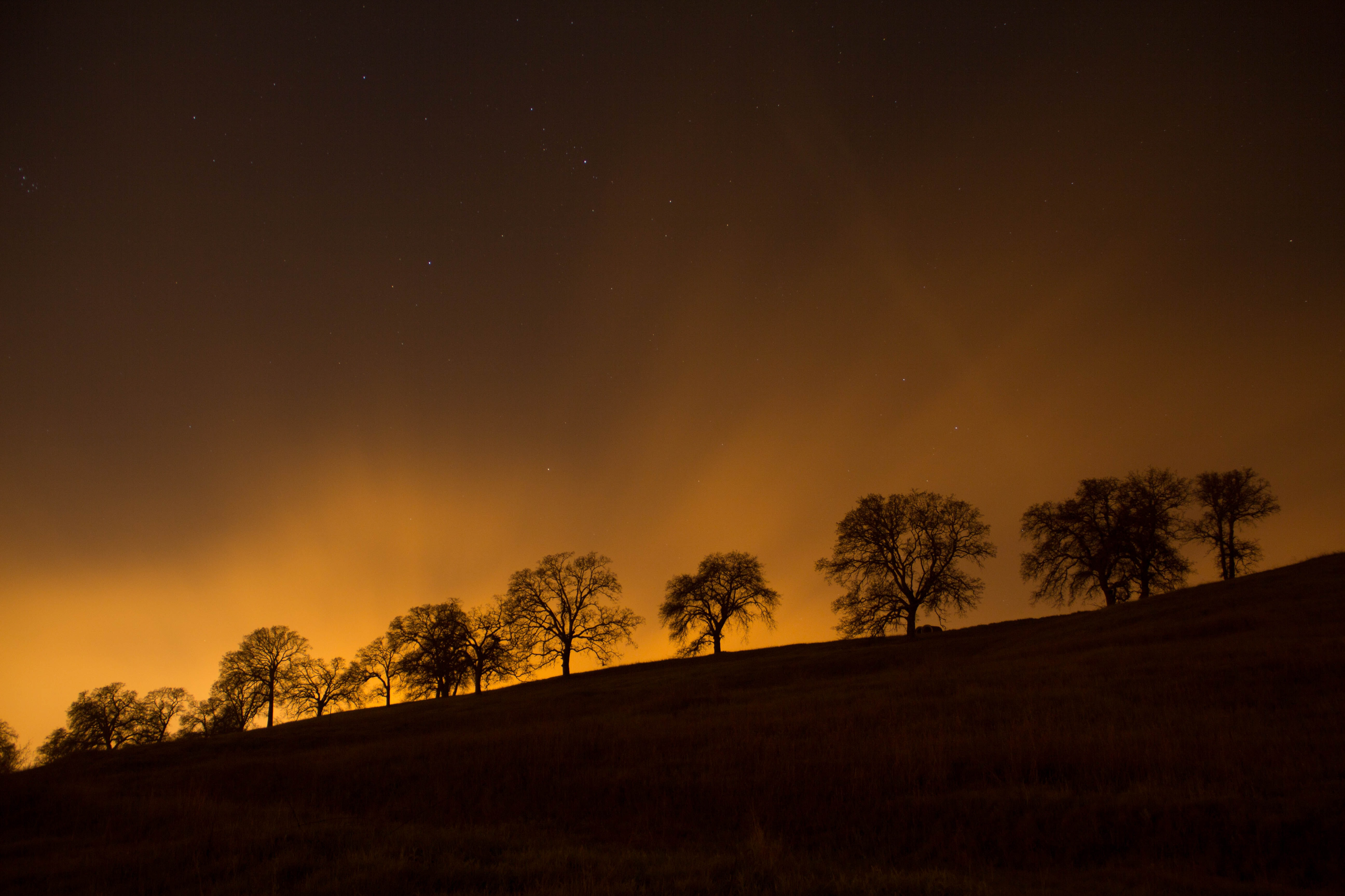 fiery sunset :: wil stewart