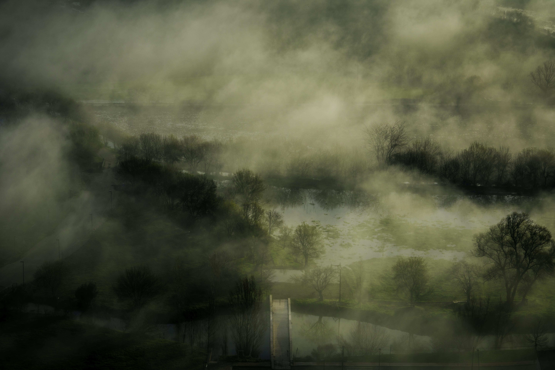 zamglony krajobraz; źrodło: Unsplash