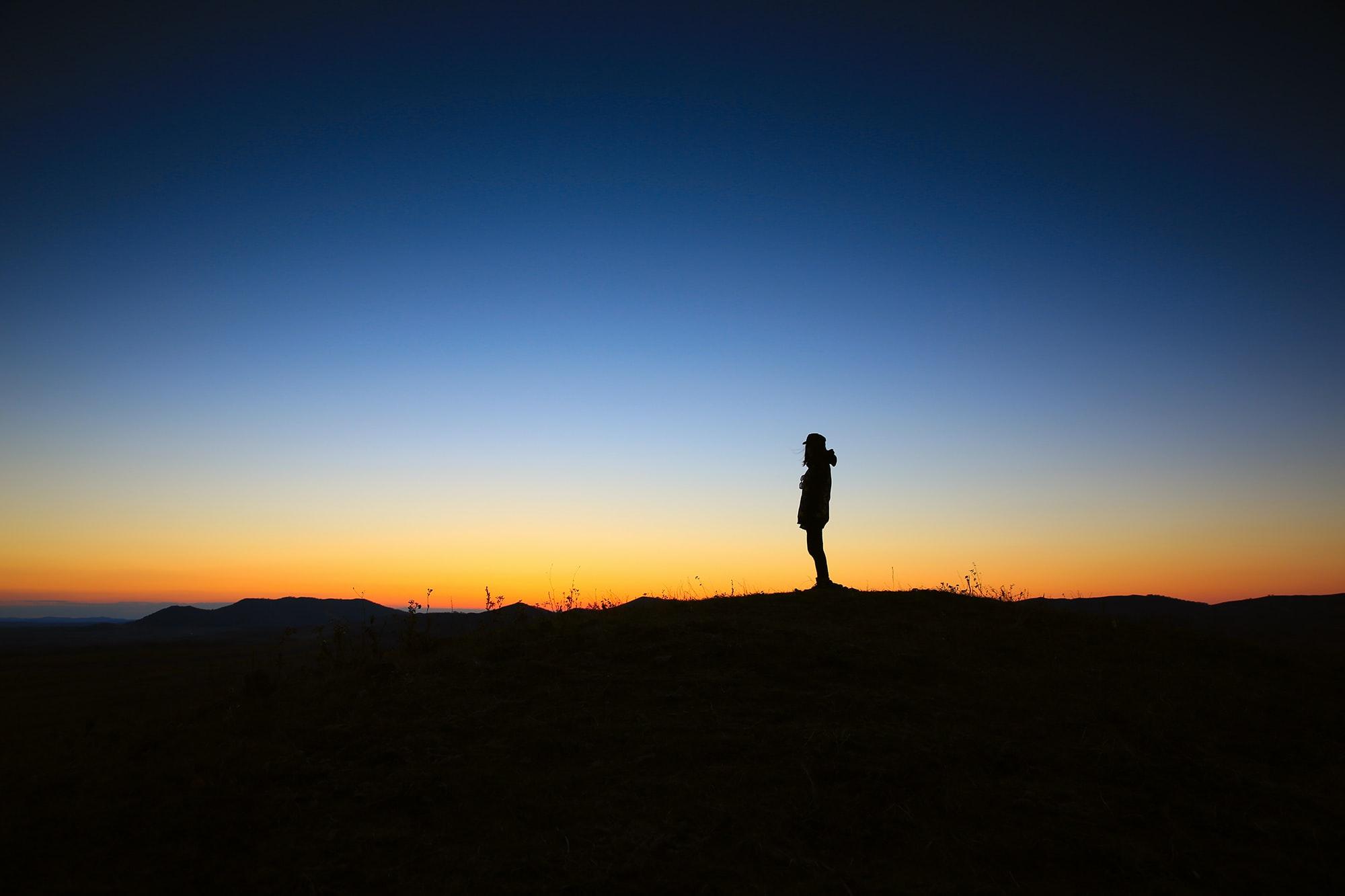 silhouette :: lee scott